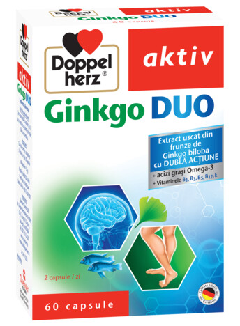 Doppelherz aktiv Ginkgo DUO
